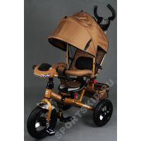 Street Trike